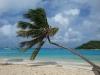 Bequia und die Tobago Cays