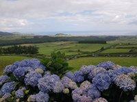 Terceira - Azoren